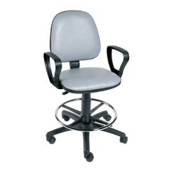 Sunflower Hygienic Gas Lift Chair with Arms and Foot Ring (Sun-CHA4)